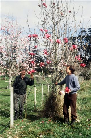 A considerably younger Mark and the now deceased Felix look at an early flowering on Vulcan™