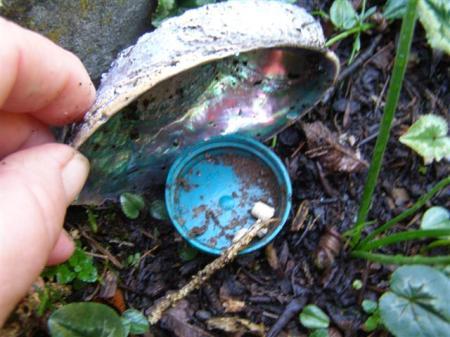 The low tech slug bait station