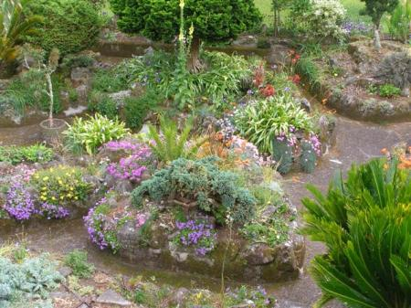 Looking more cottage garden than rockery this week