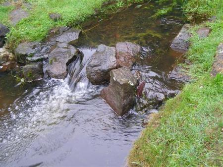 It may be a natural stream in our park but it is hardly an easy care water feature