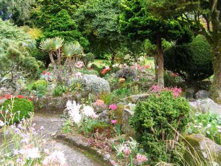 The rockery in autumn