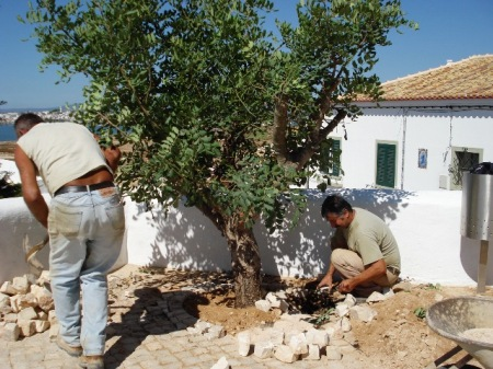 Gardening styles and plants  have evolved for very different conditions in the Med - this is Portugal