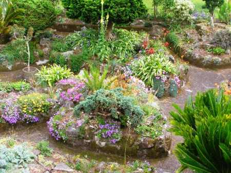 Ours is not a rockery for growing alpines