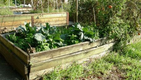Raised beds have their place, but not necessarily every place (Photo Joe Mabel, Wikimedia Commons)