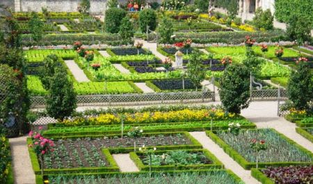 Setting the standard, really. The ultimate potager in the parterres of Villandry (Wiki Commons photo)