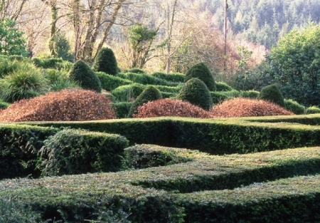Veddw, the garden of Anne Wareham and Charles Hawes (photo copyright Charles Hawes)