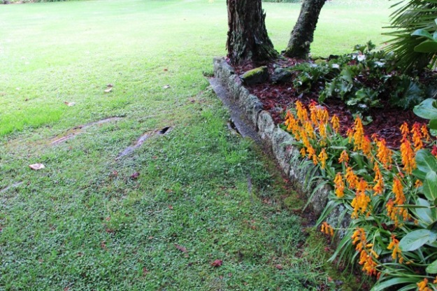 Lawncare - one of the worst culprits in environmental vandalism