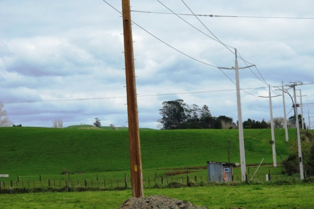 New power pylons marching over the landscape, solely to service the petrochem industry