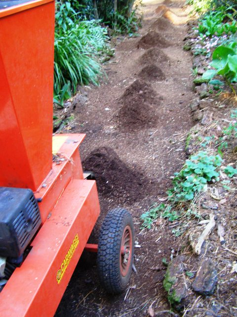 Mulching the leaf litter for the most pleasant walking surface of all