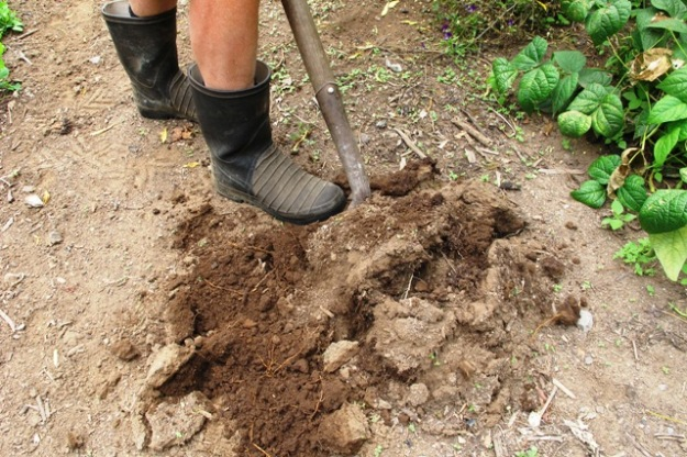 The aim is to develop friable loam