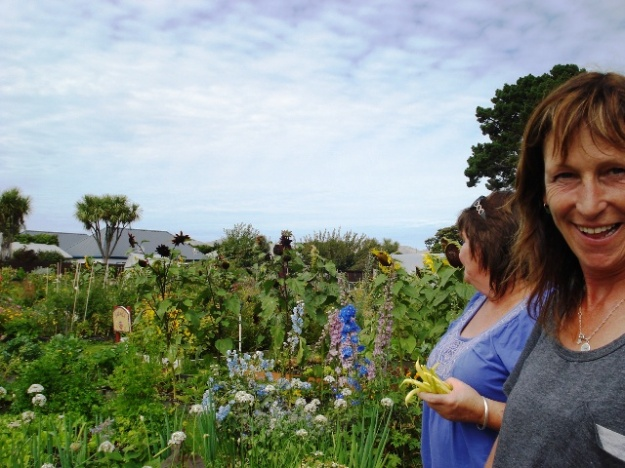 The New Brighton community gardens