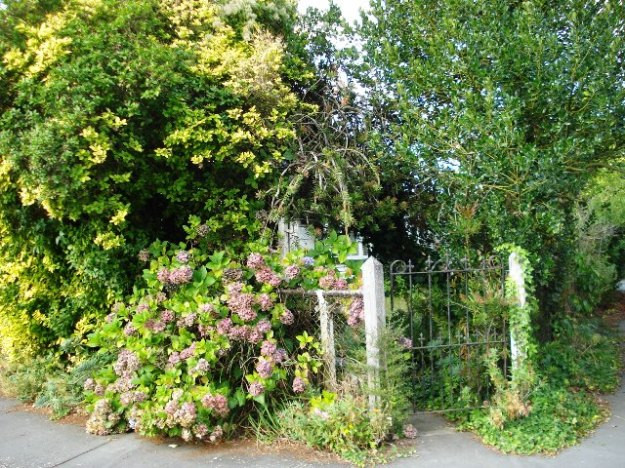 Behind every overgrown gateway, there is a personal story
