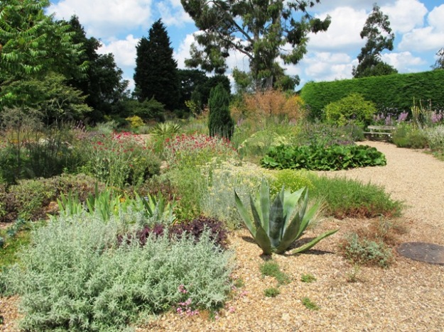 Beth Chatto's dry garden in Essex