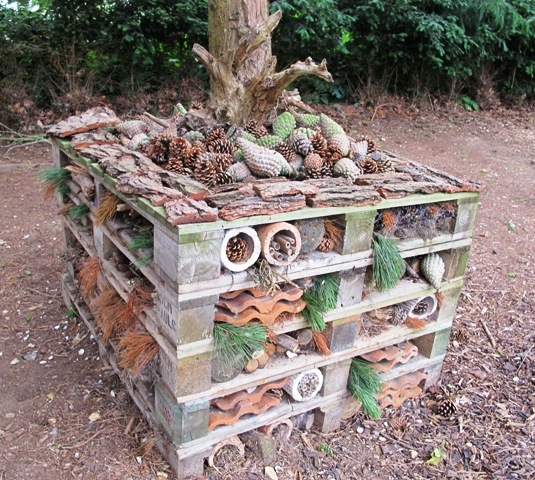 Bug hotels or insect hotels