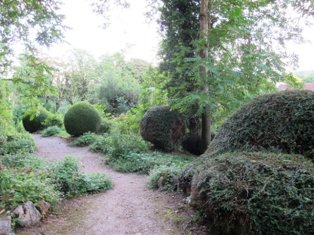 In an otherwise undistinguished garden in Giverny village, these clipped hummocks gave real impact.