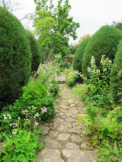 """Often referred to as """"pudding trees"""", these Chamaecyparis give structure in the otherwise informal cottage garden made by Margery Fish at East Lambrook Manor"""