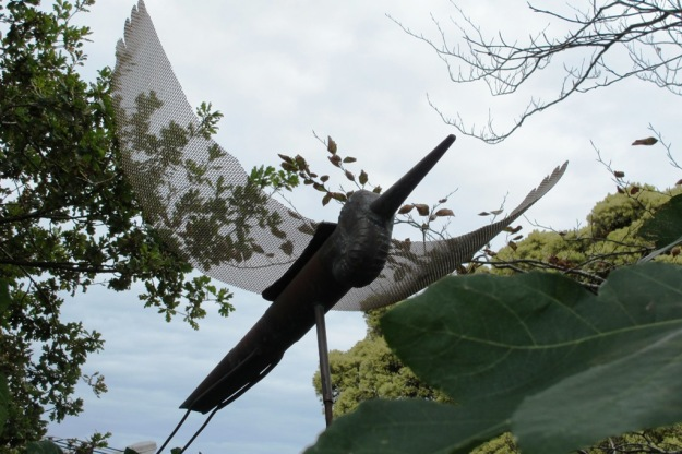 Soaring herons