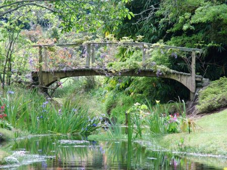 Our own bridge, pre- Monet-ising