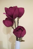Anybody can raise seedlings of Black Tulip but are they then all worth naming? We think not.