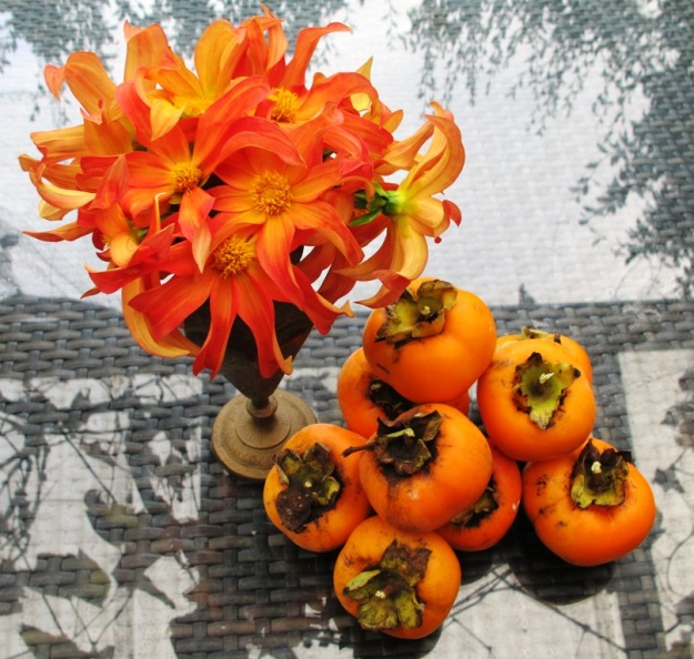 Persimmons with Dahlia Orchid. How could I resist?