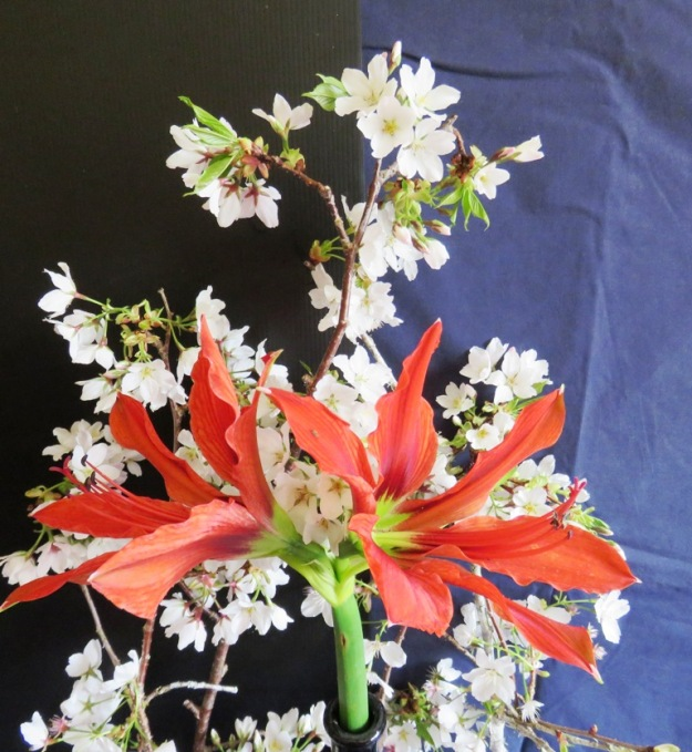 Red Peak, rendered in Hippeastrum aulicum and wild cherry blossom.