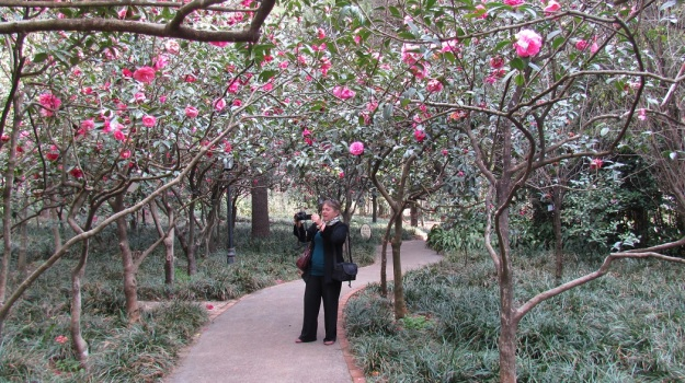 Yours truly in the Kunming Botanic Gardens (photo: Tony Barnes)