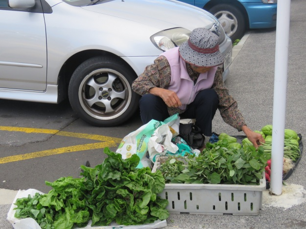 Selling quick-maturing Asian greens from the carpark